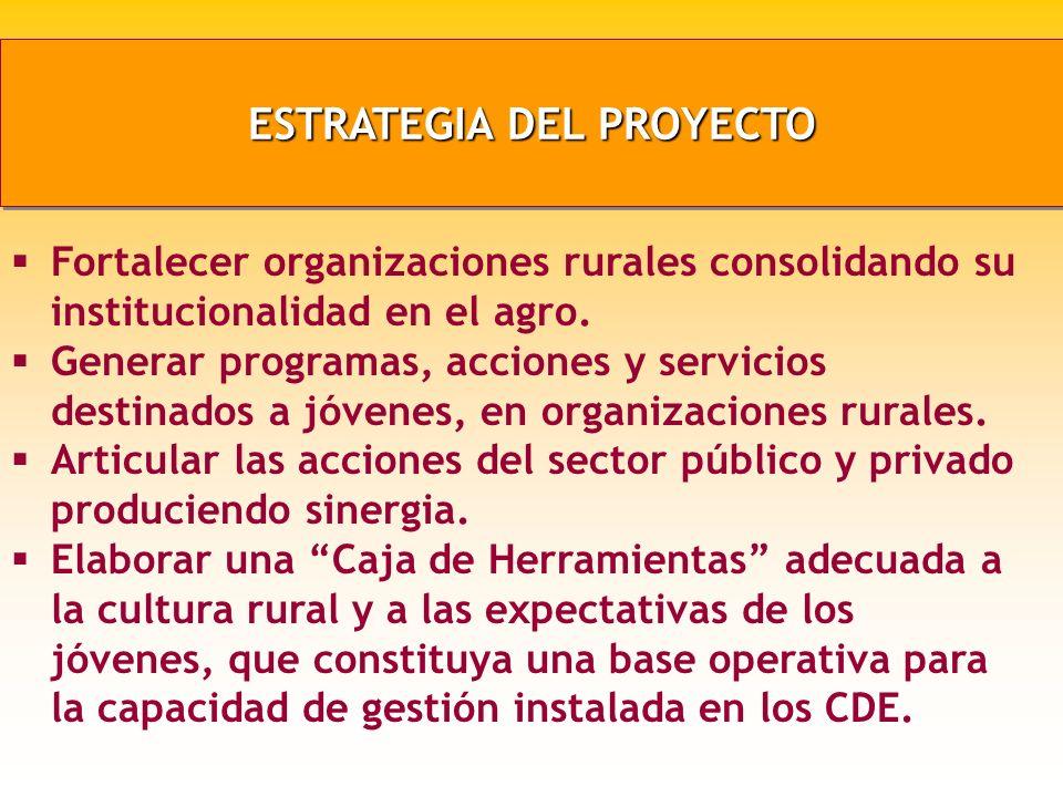 ESTRATEGIA DEL PROYECTO Fortalecer organizaciones rurales consolidando su institucionalidad en el agro.