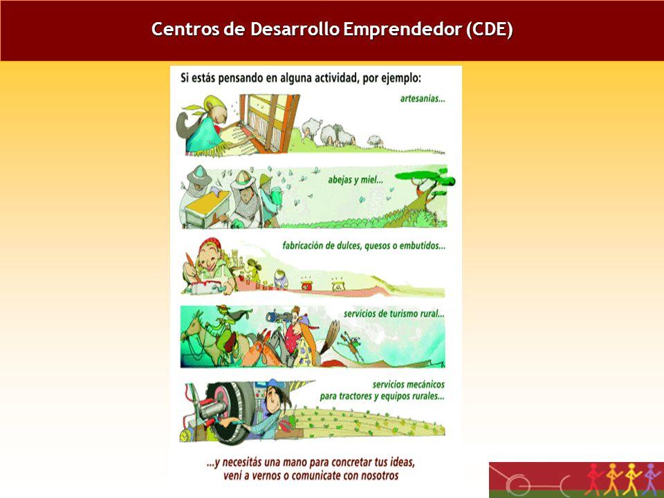 ESTRATEGIA DEL PROYECTO Fortalecer organizaciones rurales consolidando su institucionalidad en el agro. Generar programas, acciones y servicios destin