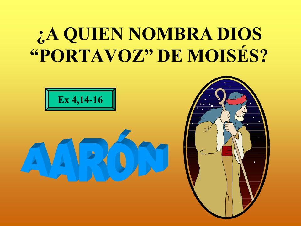 ¿A QUIEN NOMBRA DIOS PORTAVOZ DE MOISÉS? Ex 4,14-16