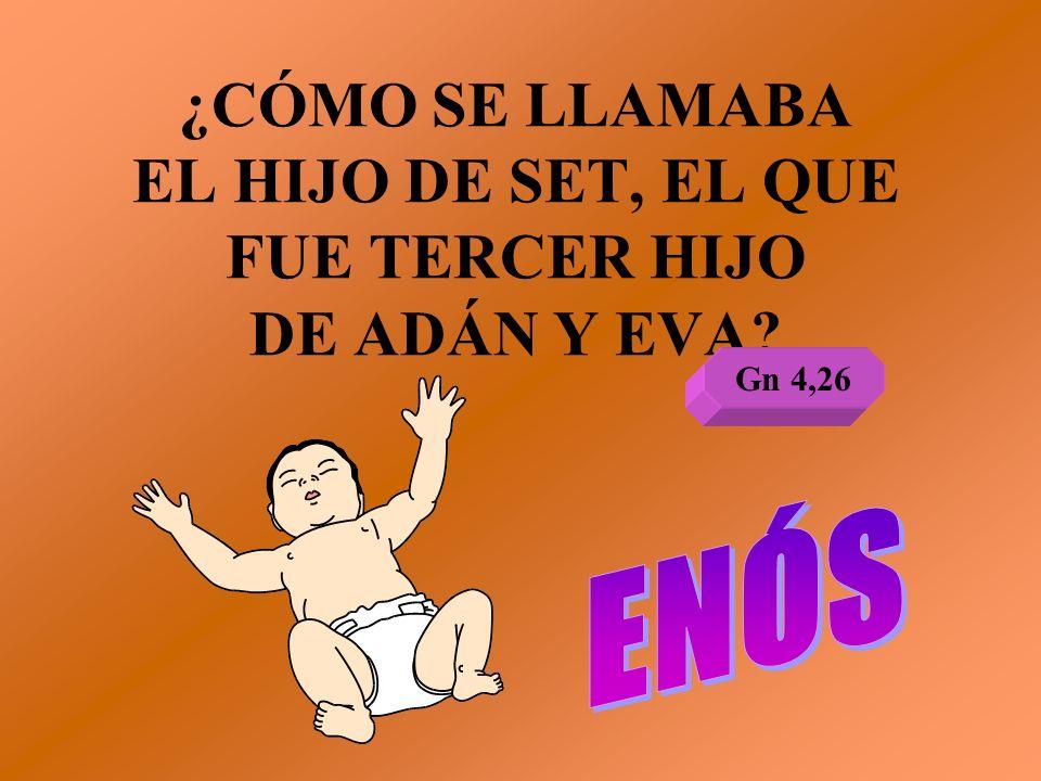 ¿CÓMO SE LLAMABA EL HIJO DE SET, EL QUE FUE TERCER HIJO DE ADÁN Y EVA? Gn 4,26