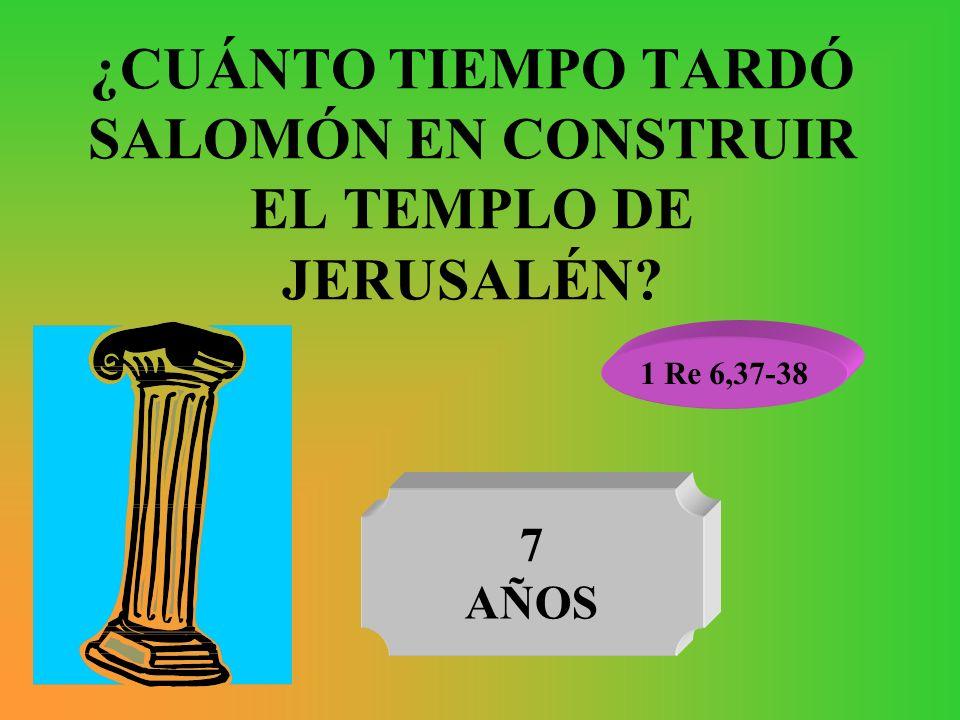 ¿CUÁNTO TIEMPO TARDÓ SALOMÓN EN CONSTRUIR EL TEMPLO DE JERUSALÉN? 1 Re 6,37-38 7 AÑOS
