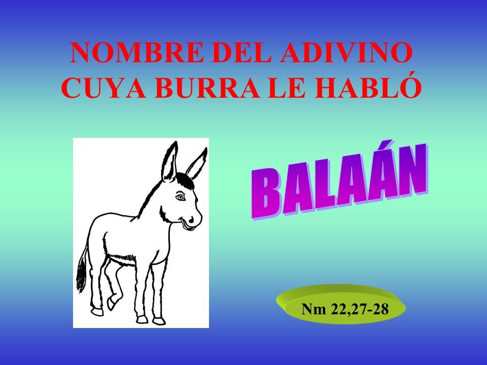 NOMBRE DEL ADIVINO CUYA BURRA LE HABLÓ Nm 22,27-28