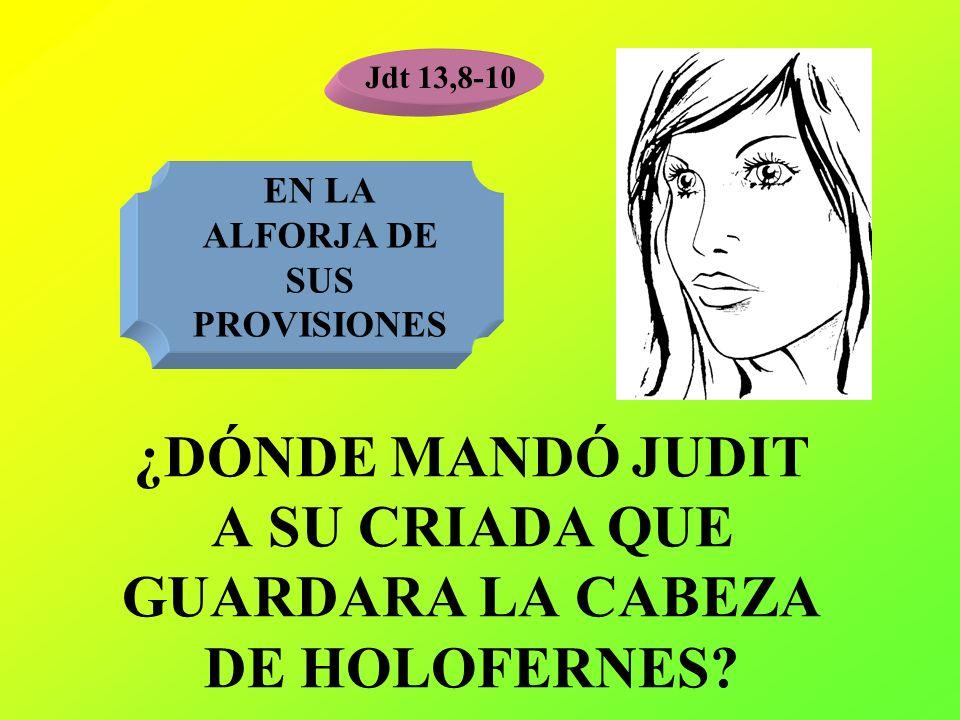 ¿DÓNDE MANDÓ JUDIT A SU CRIADA QUE GUARDARA LA CABEZA DE HOLOFERNES? Jdt 13,8-10 EN LA ALFORJA DE SUS PROVISIONES