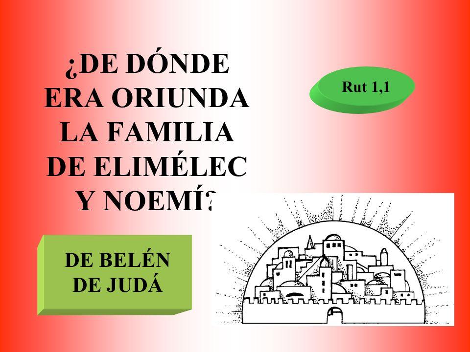 ¿DE DÓNDE ERA ORIUNDA LA FAMILIA DE ELIMÉLEC Y NOEMÍ? Rut 1,1 DE BELÉN DE JUDÁ
