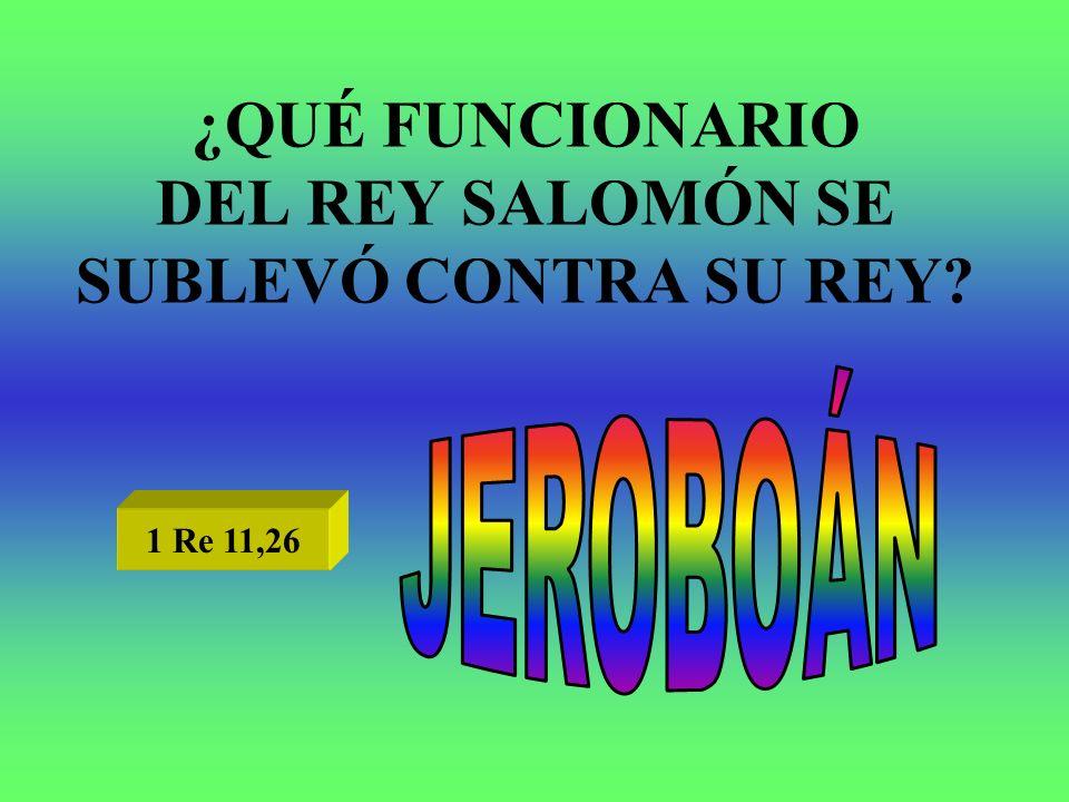 ¿QUÉ FUNCIONARIO DEL REY SALOMÓN SE SUBLEVÓ CONTRA SU REY? 1 Re 11,26