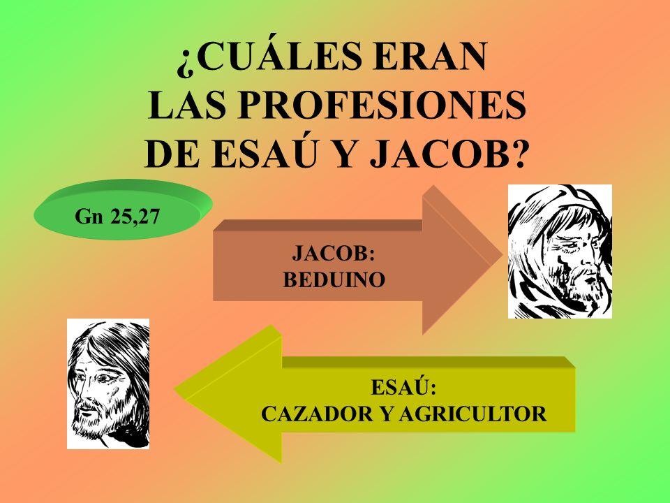 ¿CUÁLES ERAN LAS PROFESIONES DE ESAÚ Y JACOB? Gn 25,27 ESAÚ: CAZADOR Y AGRICULTOR JACOB: BEDUINO