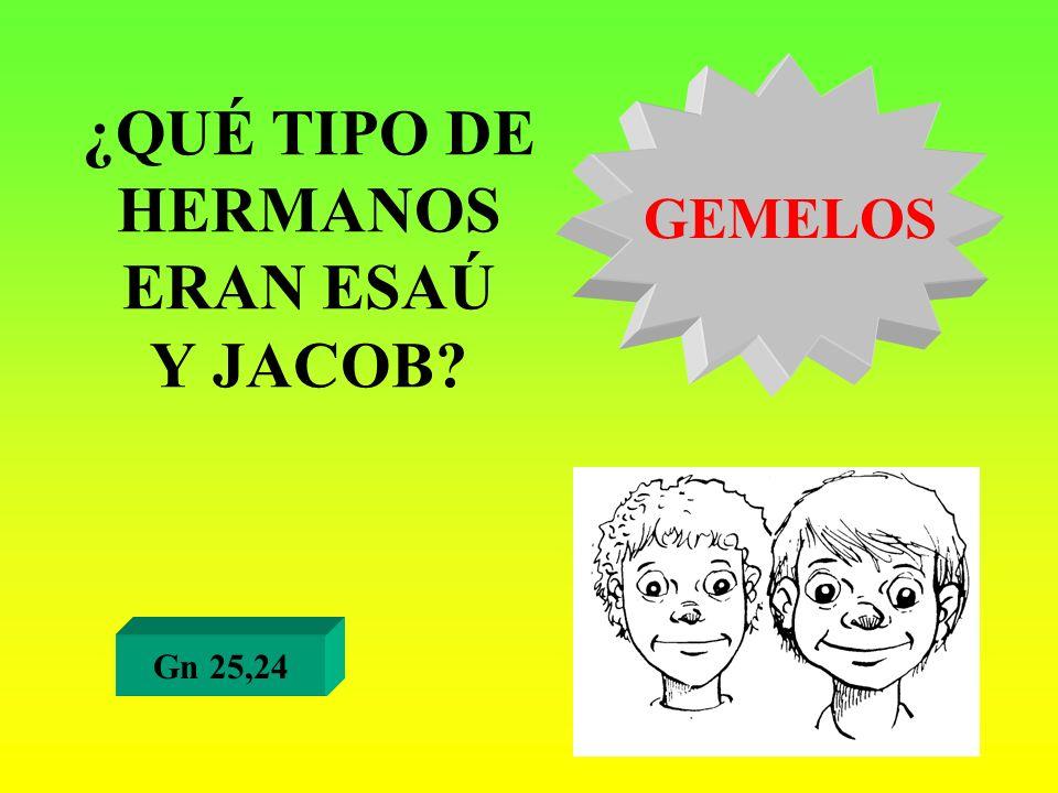 ¿QUÉ TIPO DE HERMANOS ERAN ESAÚ Y JACOB? Gn 25,24 GEMELOS