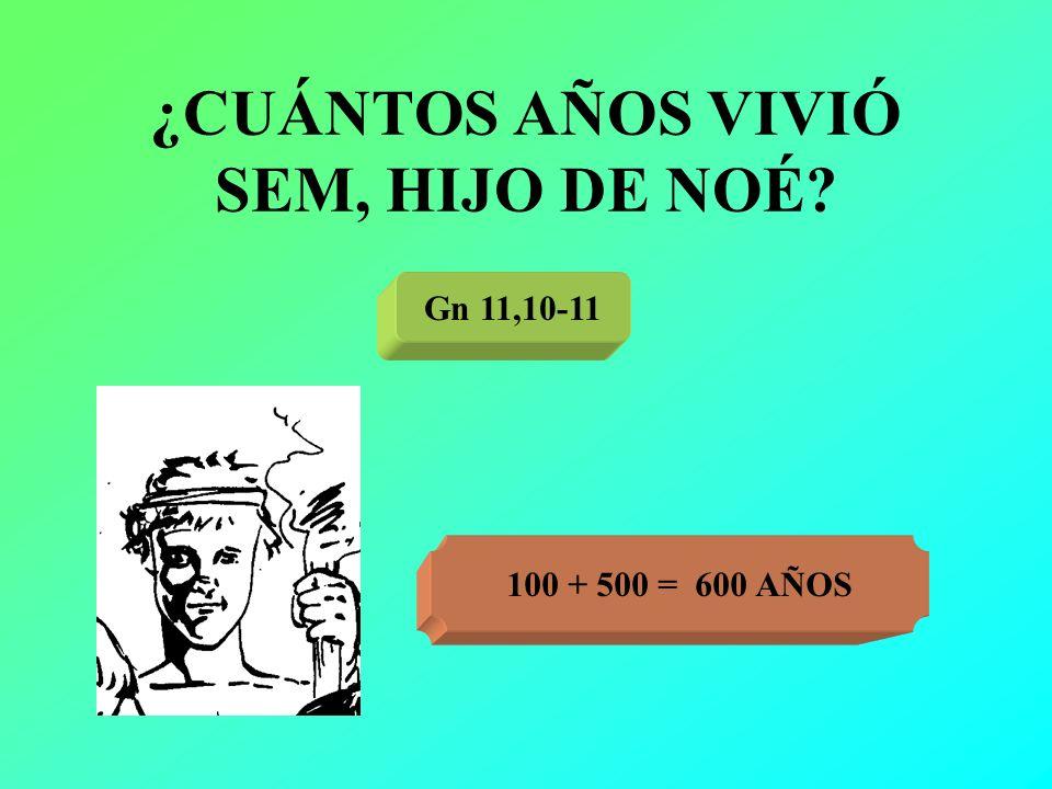 ¿CUÁNTOS AÑOS VIVIÓ SEM, HIJO DE NOÉ? Gn 11,10-11 100 + 500 = 600 AÑOS