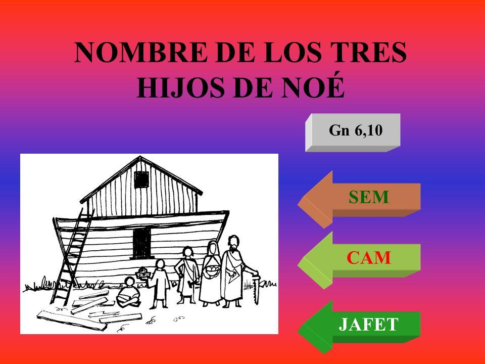 NOMBRE DE LOS TRES HIJOS DE NOÉ Gn 6,10 SEM CAM JAFET