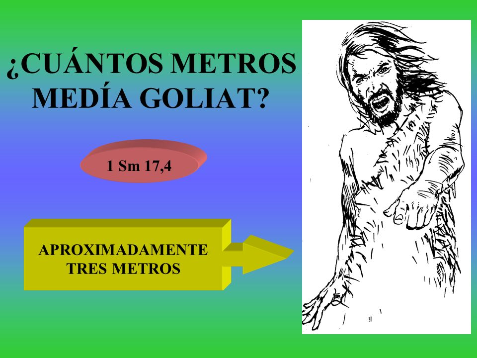 ¿CUÁNTOS METROS MEDÍA GOLIAT? 1 Sm 17,4 APROXIMADAMENTE TRES METROS