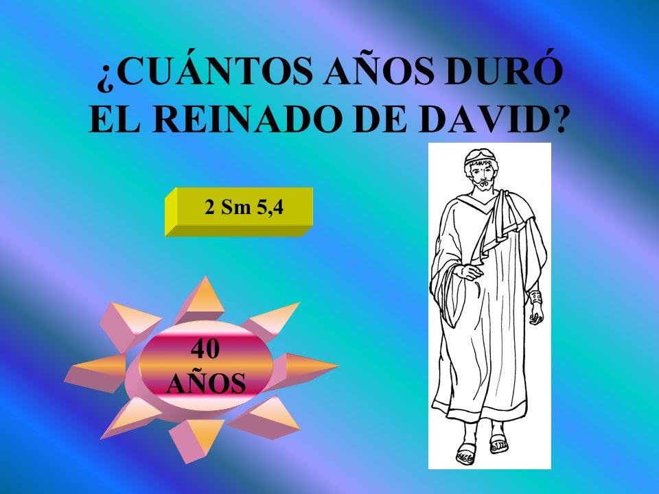 ¿CUÁNTOS AÑOS DURÓ EL REINADO DE DAVID? 2 Sm 5,4 40 AÑOS