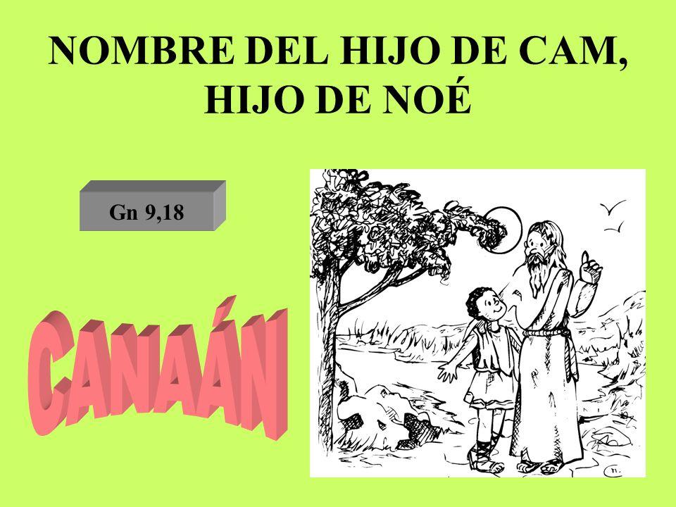 NOMBRE DEL HIJO DE CAM, HIJO DE NOÉ Gn 9,18