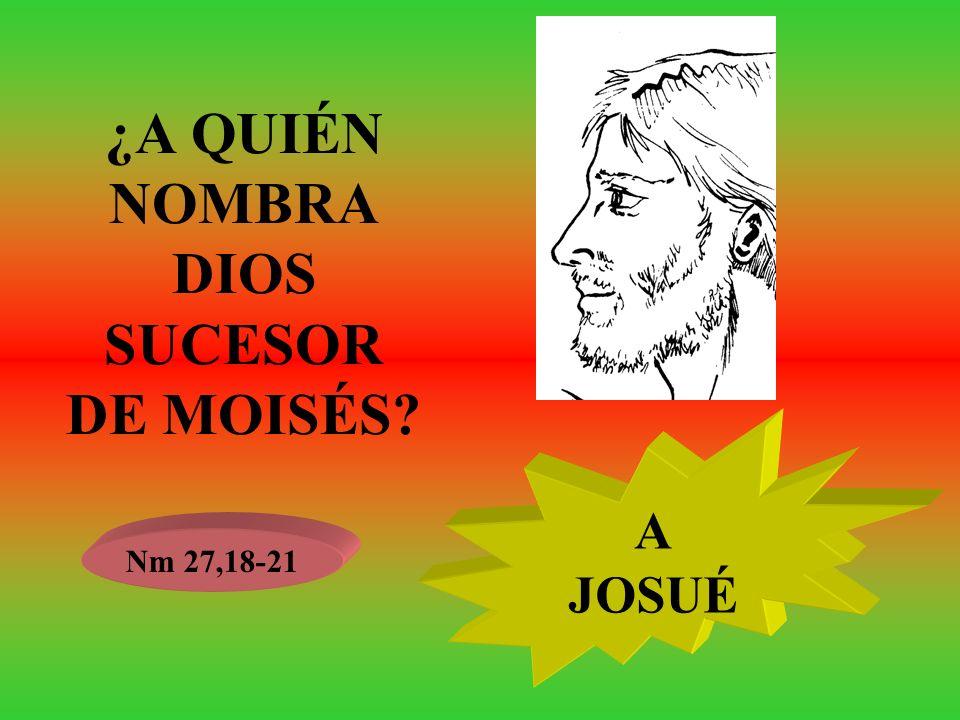 ¿A QUIÉN NOMBRA DIOS SUCESOR DE MOISÉS? Nm 27,18-21 A JOSUÉ