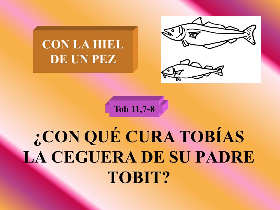 ¿CON QUÉ CURA TOBÍAS LA CEGUERA DE SU PADRE TOBIT? Tob 11,7-8 CON LA HIEL DE UN PEZ