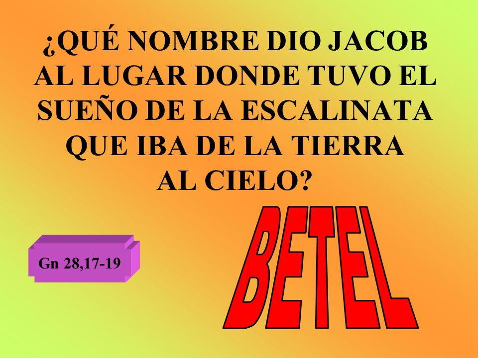 ¿QUÉ NOMBRE DIO JACOB AL LUGAR DONDE TUVO EL SUEÑO DE LA ESCALINATA QUE IBA DE LA TIERRA AL CIELO? Gn 28,17-19