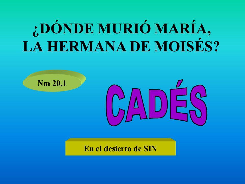 ¿DÓNDE MURIÓ MARÍA, LA HERMANA DE MOISÉS? Nm 20,1 En el desierto de SIN