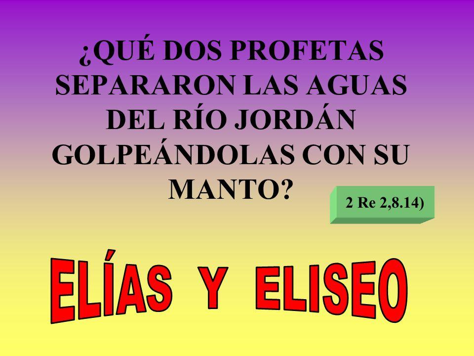 ¿QUÉ DOS PROFETAS SEPARARON LAS AGUAS DEL RÍO JORDÁN GOLPEÁNDOLAS CON SU MANTO? 2 Re 2,8.14)