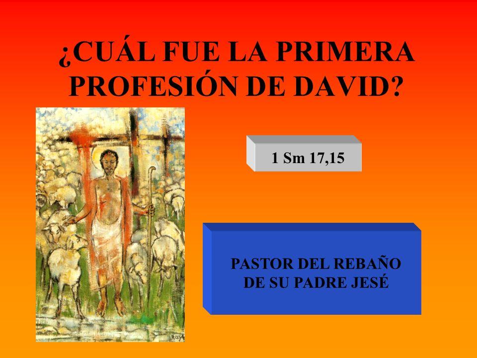 ¿CUÁL FUE LA PRIMERA PROFESIÓN DE DAVID? 1 Sm 17,15 PASTOR DEL REBAÑO DE SU PADRE JESÉ
