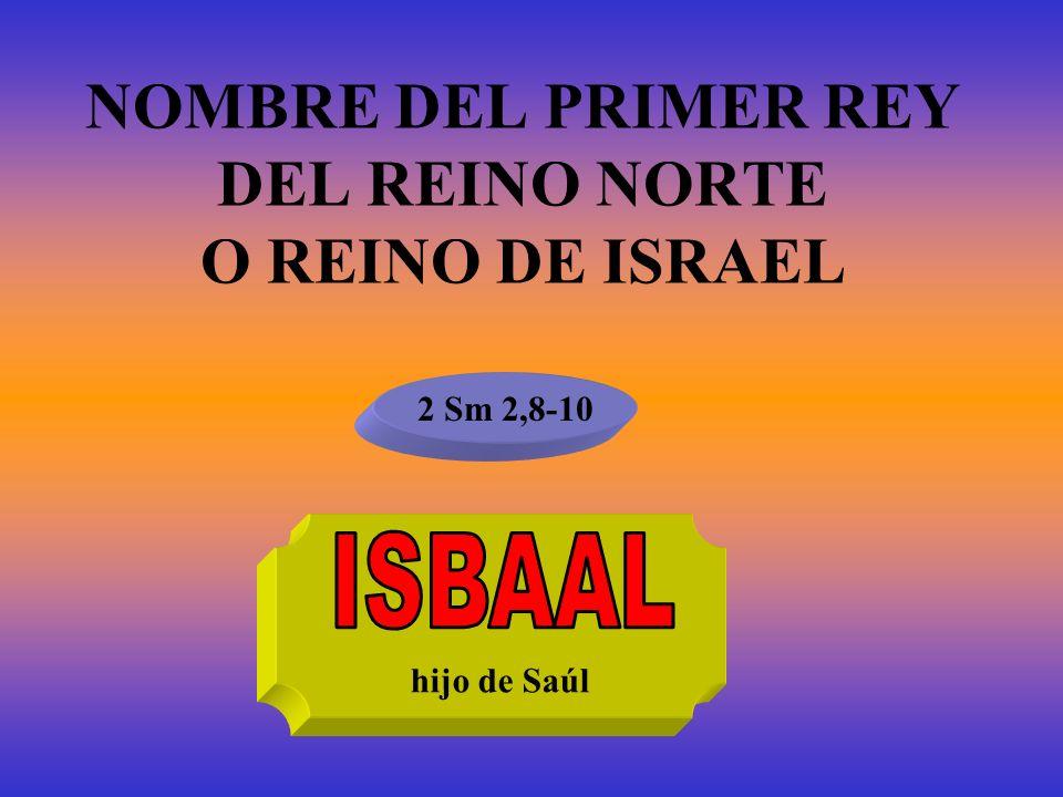 NOMBRE DEL PRIMER REY DEL REINO NORTE O REINO DE ISRAEL 2 Sm 2,8-10 hijo de Saúl