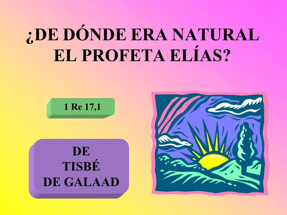 ¿DE DÓNDE ERA NATURAL EL PROFETA ELÍAS? 1 Re 17,1 DE TISBÉ DE GALAAD