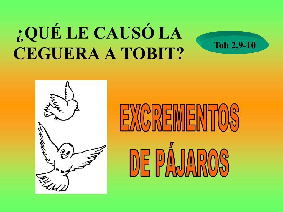 ¿QUÉ LE CAUSÓ LA CEGUERA A TOBIT? Tob 2,9-10