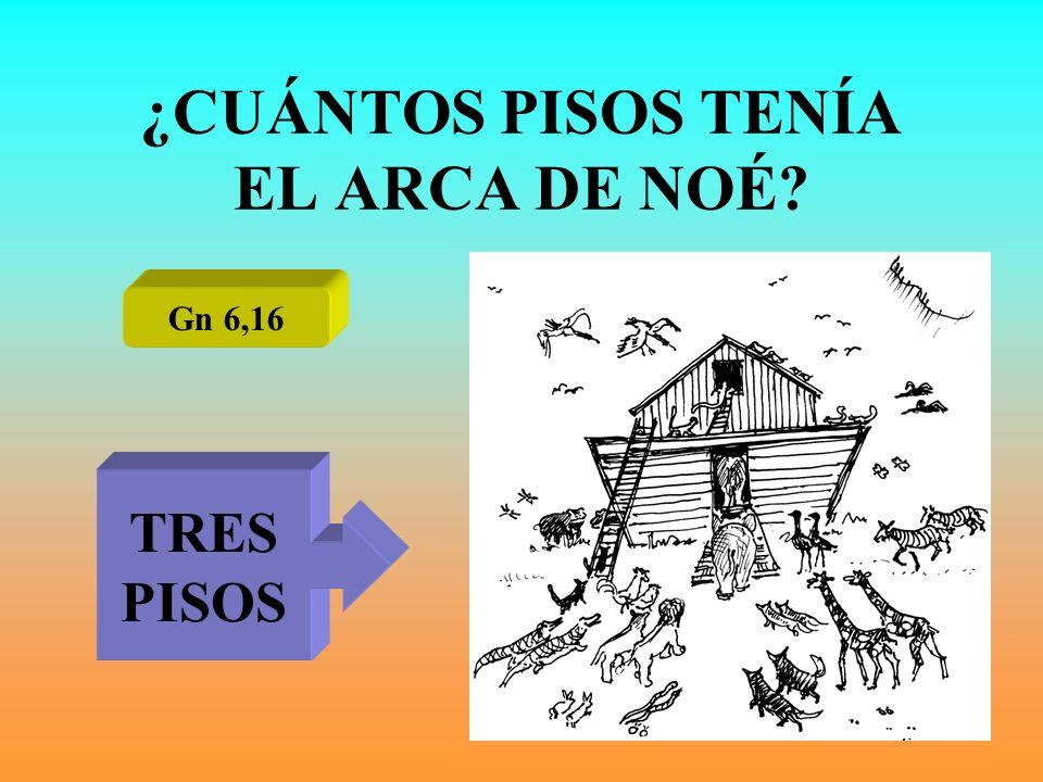 ¿CUÁNTOS PISOS TENÍA EL ARCA DE NOÉ? Gn 6,16 TRES PISOS