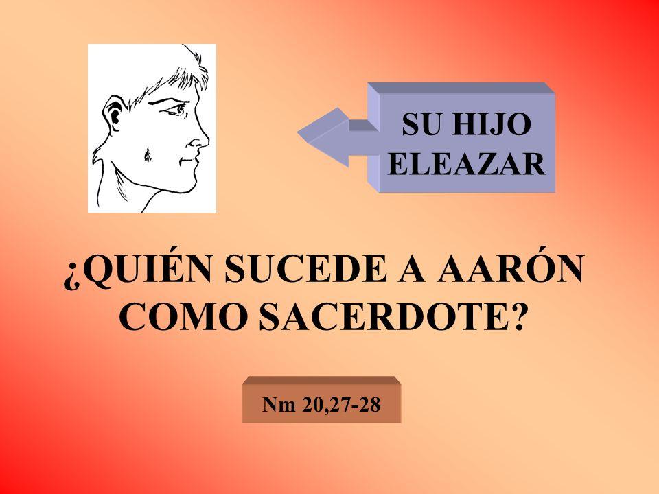 ¿QUIÉN SUCEDE A AARÓN COMO SACERDOTE? Nm 20,27-28 SU HIJO ELEAZAR
