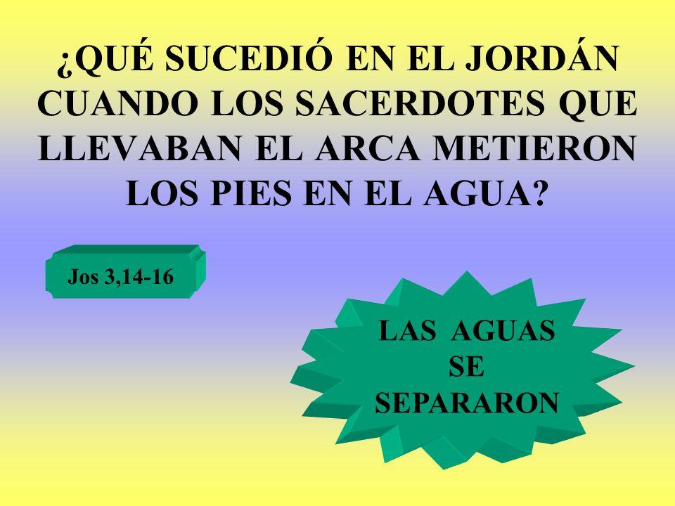¿QUÉ SUCEDIÓ EN EL JORDÁN CUANDO LOS SACERDOTES QUE LLEVABAN EL ARCA METIERON LOS PIES EN EL AGUA? Jos 3,14-16 LAS AGUAS SE SEPARARON