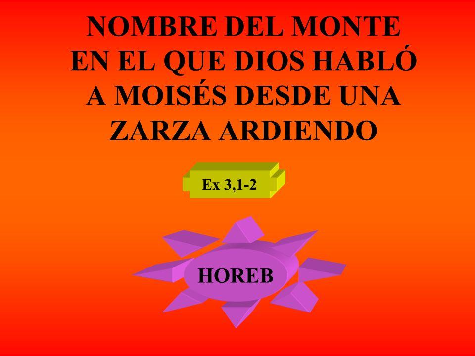 NOMBRE DEL MONTE EN EL QUE DIOS HABLÓ A MOISÉS DESDE UNA ZARZA ARDIENDO Ex 3,1-2 HOREB