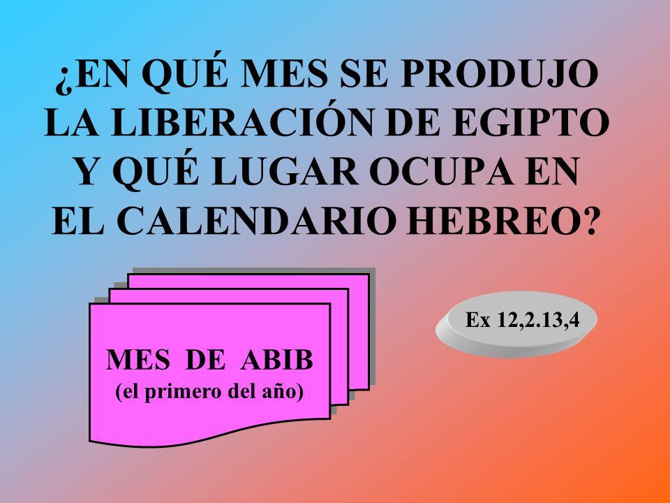 ¿EN QUÉ MES SE PRODUJO LA LIBERACIÓN DE EGIPTO Y QUÉ LUGAR OCUPA EN EL CALENDARIO HEBREO? MES DE ABIB (el primero del año) MES DE ABIB (el primero del