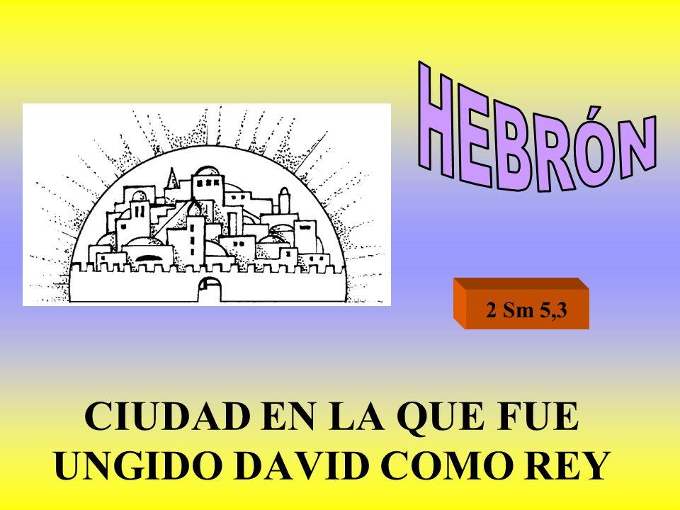 CIUDAD EN LA QUE FUE UNGIDO DAVID COMO REY 2 Sm 5,3