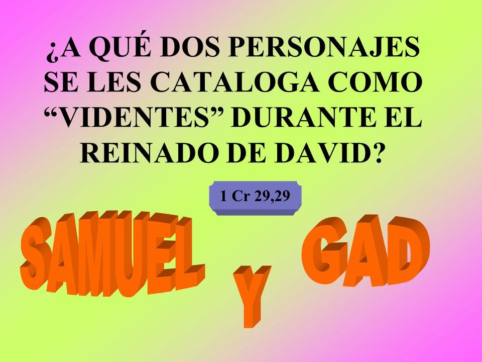 ¿A QUÉ DOS PERSONAJES SE LES CATALOGA COMO VIDENTES DURANTE EL REINADO DE DAVID? 1 Cr 29,29