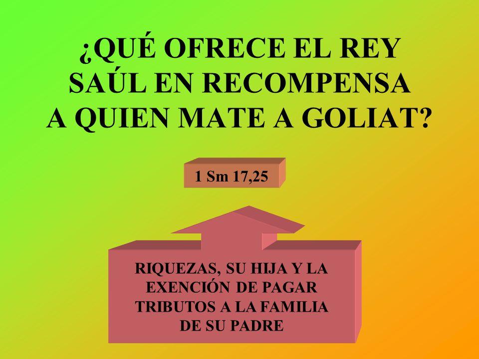 ¿QUÉ OFRECE EL REY SAÚL EN RECOMPENSA A QUIEN MATE A GOLIAT? 1 Sm 17,25 RIQUEZAS, SU HIJA Y LA EXENCIÓN DE PAGAR TRIBUTOS A LA FAMILIA DE SU PADRE