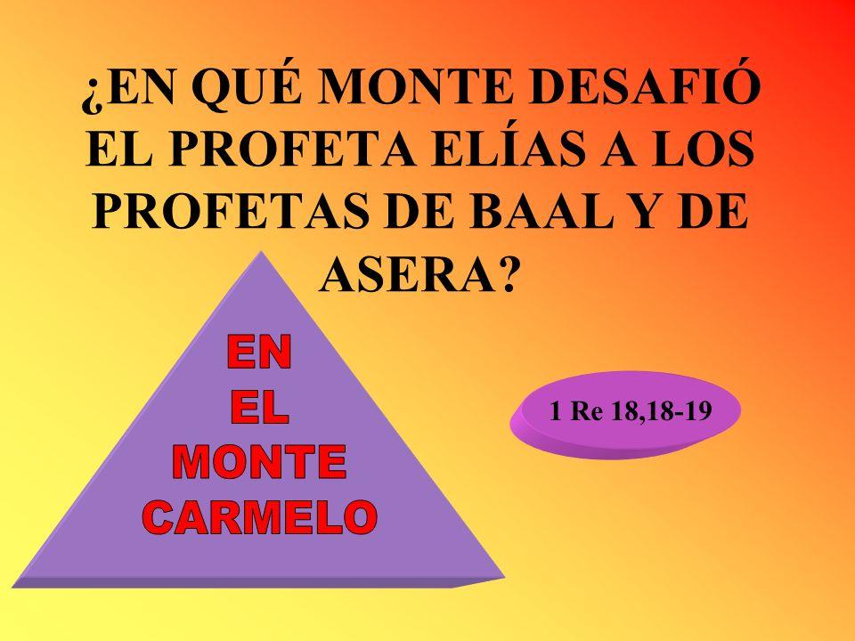 ¿EN QUÉ MONTE DESAFIÓ EL PROFETA ELÍAS A LOS PROFETAS DE BAAL Y DE ASERA? 1 Re 18,18-19