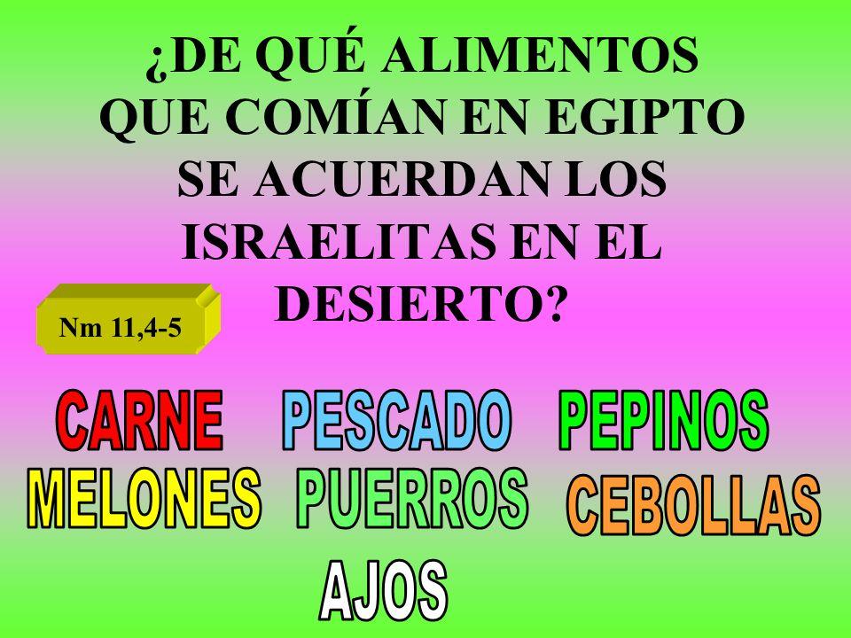 ¿DE QUÉ ALIMENTOS QUE COMÍAN EN EGIPTO SE ACUERDAN LOS ISRAELITAS EN EL DESIERTO? Nm 11,4-5