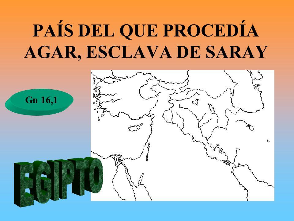 PAÍS DEL QUE PROCEDÍA AGAR, ESCLAVA DE SARAY Gn 16,1