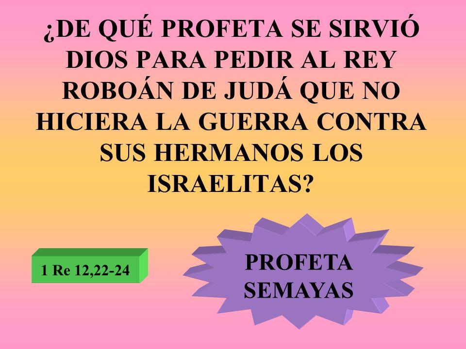 ¿DE QUÉ PROFETA SE SIRVIÓ DIOS PARA PEDIR AL REY ROBOÁN DE JUDÁ QUE NO HICIERA LA GUERRA CONTRA SUS HERMANOS LOS ISRAELITAS? 1 Re 12,22-24 PROFETA SEM