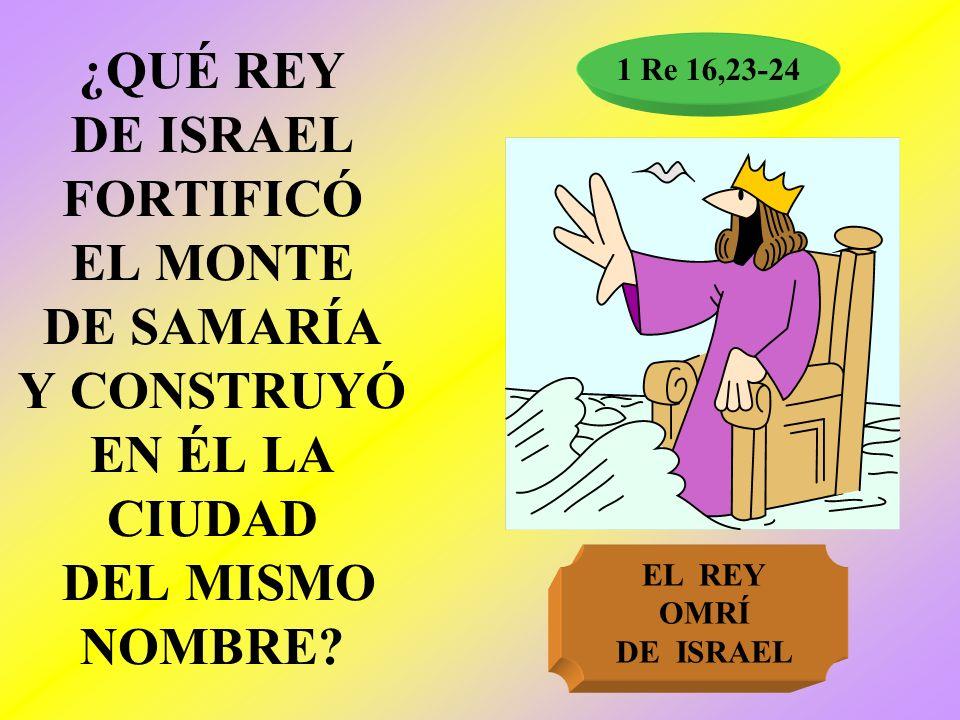 ¿QUÉ REY DE ISRAEL FORTIFICÓ EL MONTE DE SAMARÍA Y CONSTRUYÓ EN ÉL LA CIUDAD DEL MISMO NOMBRE? 1 Re 16,23-24 EL REY OMRÍ DE ISRAEL