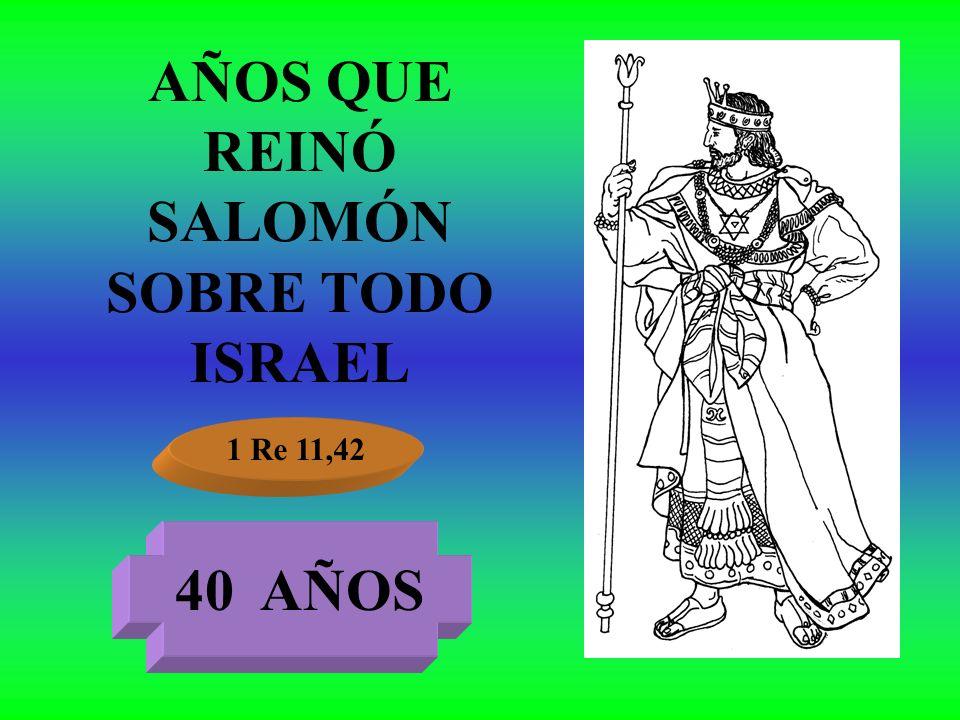 AÑOS QUE REINÓ SALOMÓN SOBRE TODO ISRAEL 1 Re 11,42 40 AÑOS