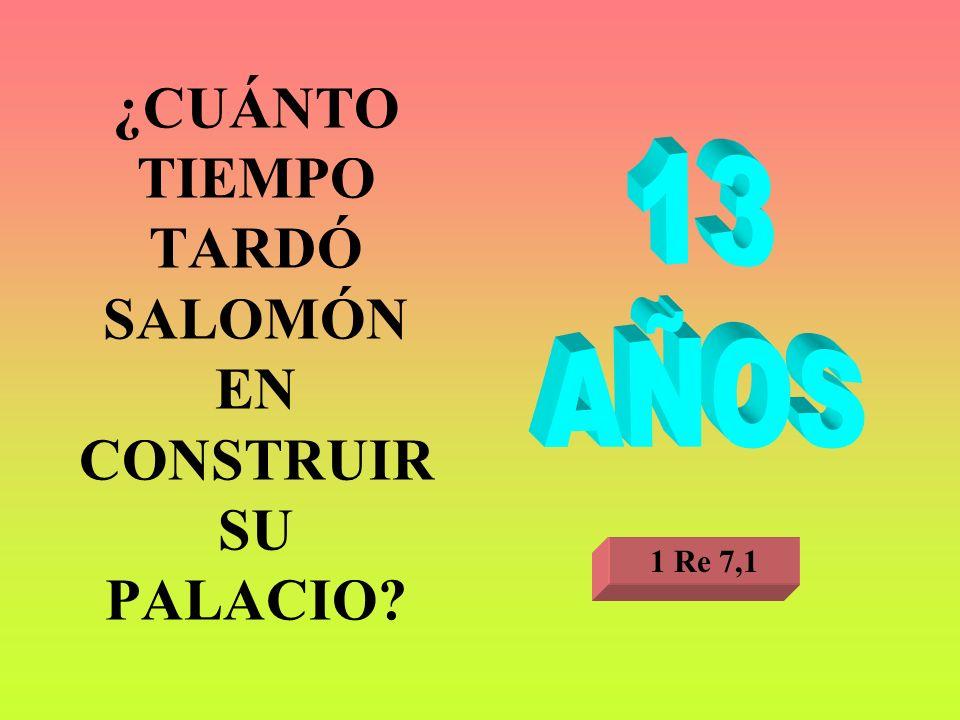 ¿CUÁNTO TIEMPO TARDÓ SALOMÓN EN CONSTRUIR SU PALACIO? 1 Re 7,1
