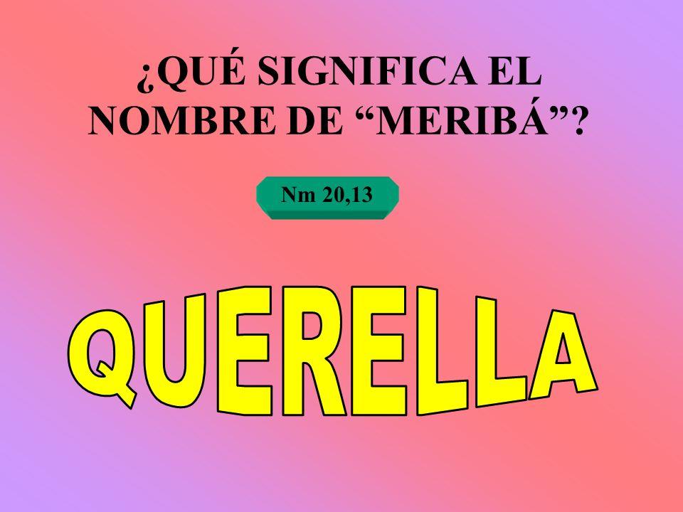 ¿QUÉ SIGNIFICA EL NOMBRE DE MERIBÁ? Nm 20,13