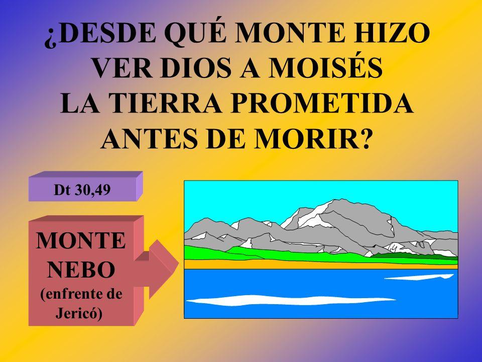 ¿DESDE QUÉ MONTE HIZO VER DIOS A MOISÉS LA TIERRA PROMETIDA ANTES DE MORIR? Dt 30,49 MONTE NEBO (enfrente de Jericó)