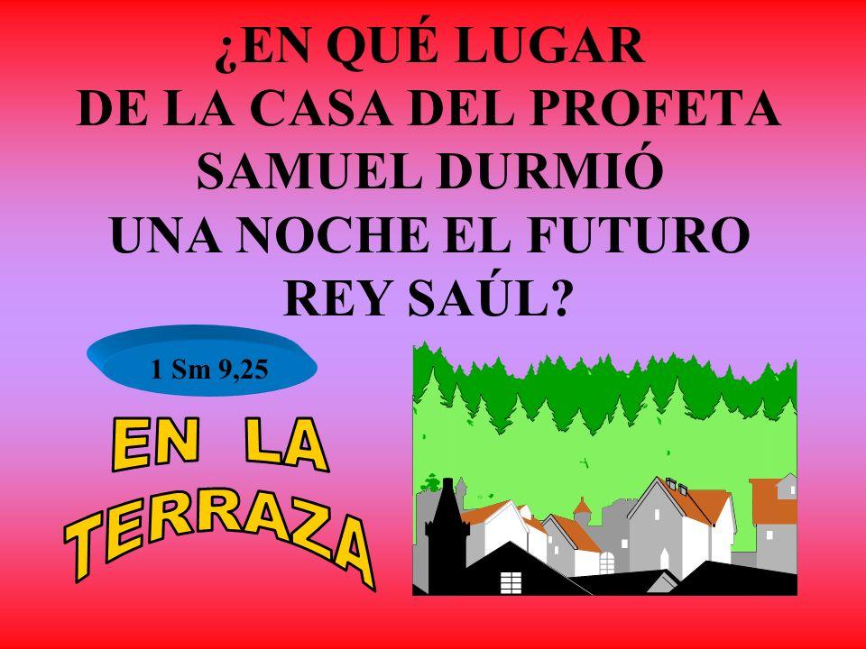 ¿EN QUÉ LUGAR DE LA CASA DEL PROFETA SAMUEL DURMIÓ UNA NOCHE EL FUTURO REY SAÚL? 1 Sm 9,25