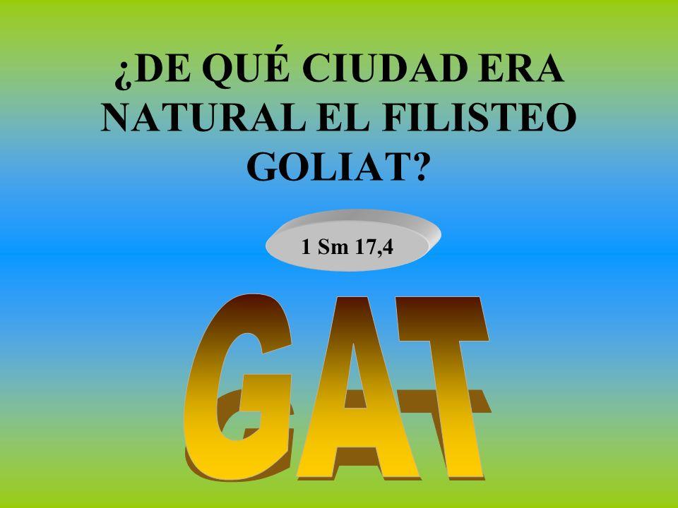 ¿DE QUÉ CIUDAD ERA NATURAL EL FILISTEO GOLIAT? 1 Sm 17,4