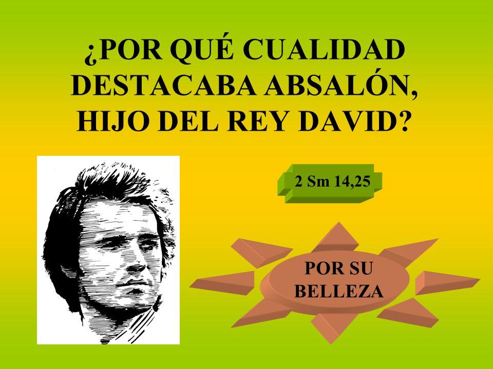 ¿POR QUÉ CUALIDAD DESTACABA ABSALÓN, HIJO DEL REY DAVID? 2 Sm 14,25 POR SU BELLEZA