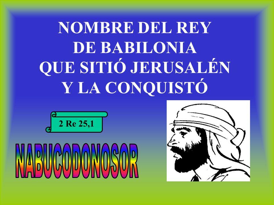 NOMBRE DEL REY DE BABILONIA QUE SITIÓ JERUSALÉN Y LA CONQUISTÓ 2 Re 25,1