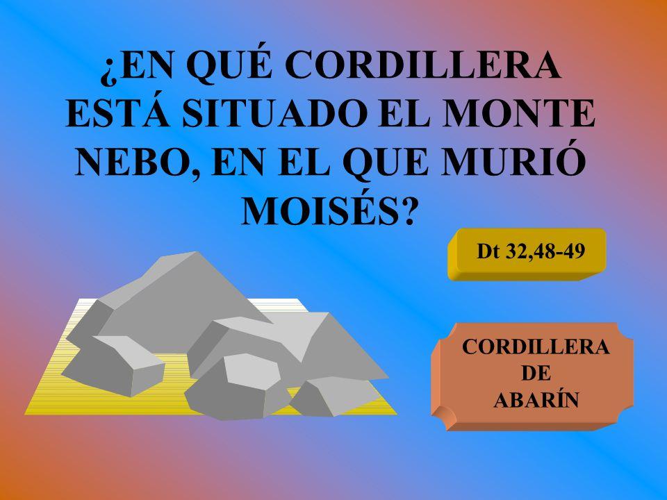 ¿EN QUÉ CORDILLERA ESTÁ SITUADO EL MONTE NEBO, EN EL QUE MURIÓ MOISÉS? Dt 32,48-49 CORDILLERA DE ABARÍN