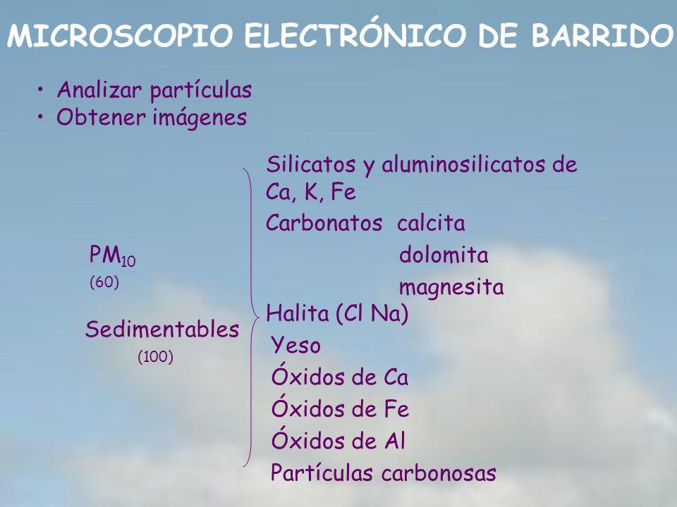 MICROSCOPIO ELECTRÓNICO DE BARRIDO PM 10 (60) Sedimentables (100) Silicatos y aluminosilicatos de Ca, K, Fe Yeso Halita (Cl Na) Óxidos de Fe Óxidos de
