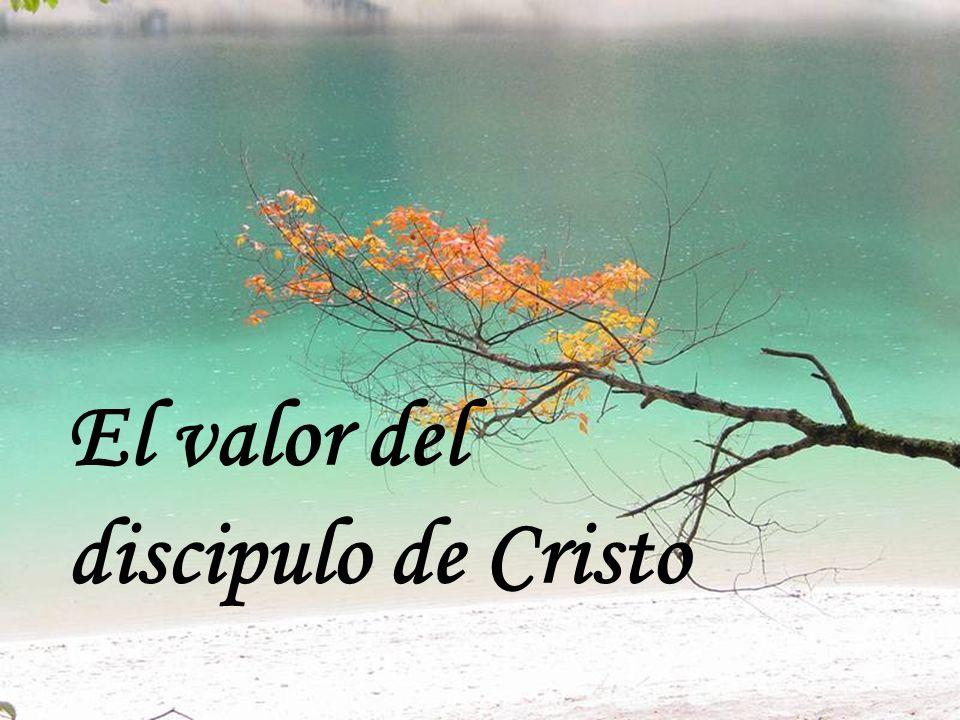 El valor del discipulo de Cristo