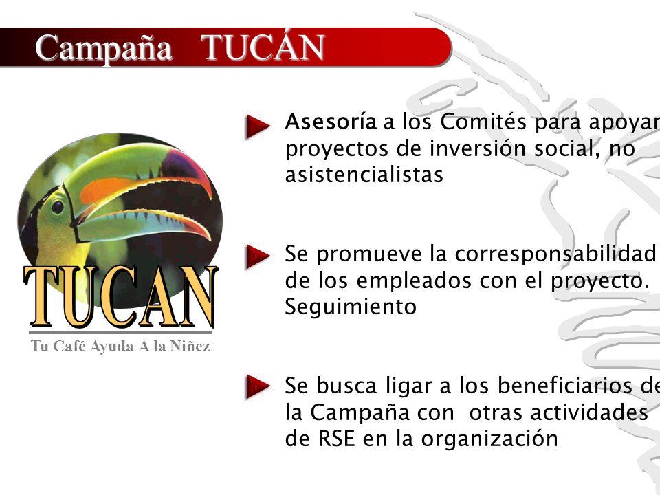 Campaña TUCÁN Asesoría a los Comités para apoyar proyectos de inversión social, no asistencialistas Se promueve la corresponsabilidad de los empleados